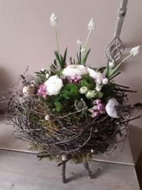 Voorjaarsnest