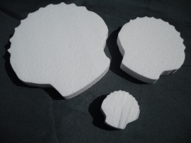 Schelpen, set van drie stuks