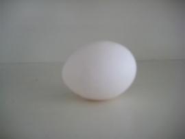 Piepschuim ei, hoogte 10 cm