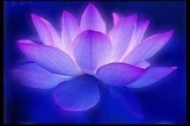 Opleiding 'Transmutatie met de Violette Vlam'