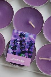 Waxinelichtjes `Lavendel`