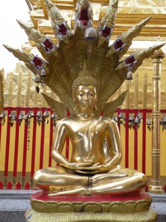 Zaterdag boeddha