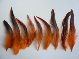 AM.109- 15 stuks hanenveren oranje/bruin met oliekleurige gloed van 12-20cm lang