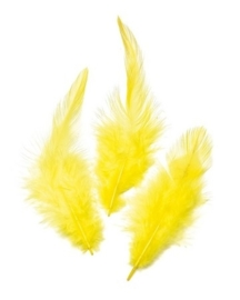 006621/0090- 16 stuks hanenveren van 6 - 10cm geel