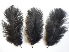AM.113- 3 stuks struisvogelveer moulin rouge veer van 16-21cm lang zwart