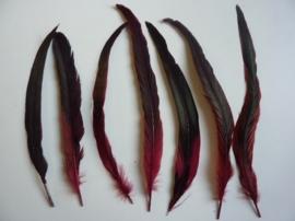 AM.111- 4 stuks exclusieve hanenveren bordeaux met zwarte/oliekleurige gloed van 27-35cm lang