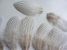 AM.102- 10 stuks zilverfazant veren van 10-14cm lang