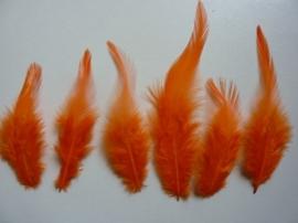 AM.311 -  15 stuks (2 gram) hanenveren van 12 tot 15cm lang oranje