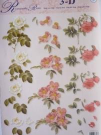 kn/825- A4 3D knipvel rozen