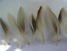 """AM.206- 20  stuks eendenveertjes """"mallard"""" van 4 - 13 cm lang"""