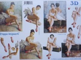 kn/713- A4 3D knipvel Le Suh ballerina