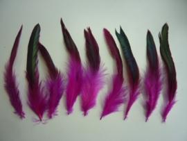 AM.93- 15 stuks hanenveren hard roze met oliekleurige gloed 12-20cm lang