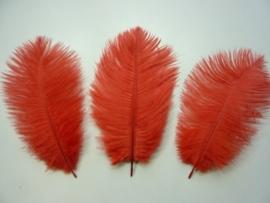 AM.154- 3 stuks struisvogelveer moulin rouge veren van 16-21cm lang rood