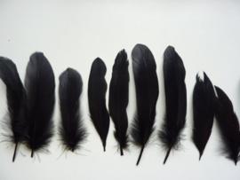 AM.221- 10 stuks ganzenveren van 15-20cm lang zwart