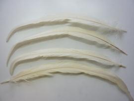 AM.150- 4 stuks exclusieve hanenveren ivoorwit 30 - 35 cm lang