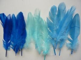 12238/3802- ca. 15 stuks ganzenveren van 12 tot 20cm lang 3 tinten blauw