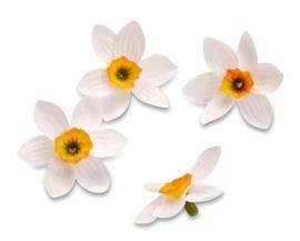 7611 230- 20 stuks decoratie bloemen narcissen van 4cm