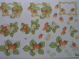 kn/412- A4 knipvel AANBIEDING wecon 193 fruit