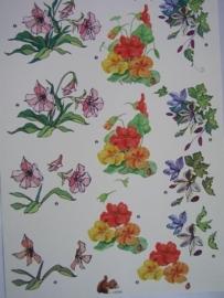 kn/529- A4 knipvel AANBIEDING klaver vier 4068 bloemen