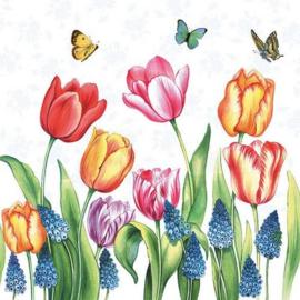 CE1113331/1525- 5 stuks servetten van 33x33cm tulpen