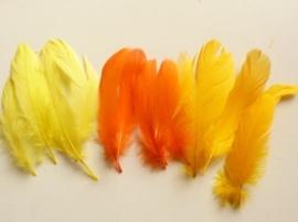 12238/3805- ca. 15 stuks ganzenveren van 12 tot 20cm lang 3 tinten geel/oranje