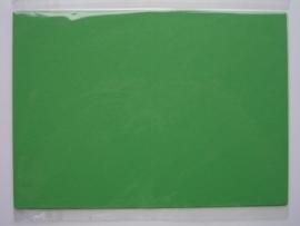 08100- 5 x luxe dubbele kaarten gerild standaard formaat licht groen 10.5x14.8cm SPECIALE AANBIEDING
