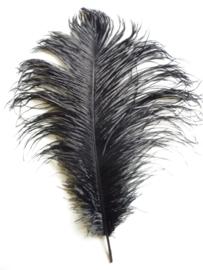 AM.411- struisvogelveer moulin rouge veer van 35 - 38 cm lang zwart