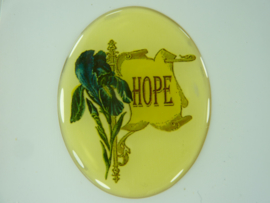 "SLK.205. A - transparante zelfklevende badge ""HOPE """
