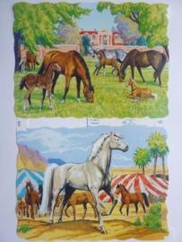 """p0015005- nostalgisch poezieplaatje """"paarden"""" 24x15cm"""