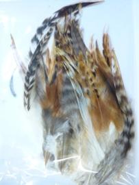 AM.213- 50 stuks grizzly hanenveren van 15-20cm lang bruin