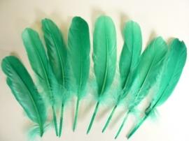 006620/0434- 8 stuks ganzenveren van 16 tot 21cm mei/ licht groen