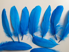 AM.318 - 10 stuks ganzenveren van 15 - 20 cm. blauw