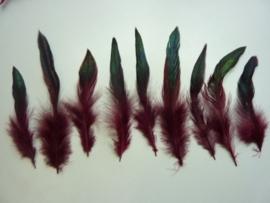 AM.94- 15 stuks hanenveren bordeaux rood met oliekleurige gloed 12-20cm lang