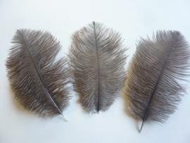 AM.190 - 3 stuks struisvogelveer van 16 - 21 cm. naturel ongeverfd