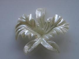 6382- witte parelmoer bloem voor broche 6cm
