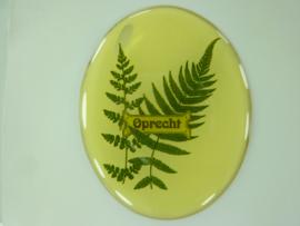 """SLK.201.B - transparante zelfklevende badge """"OPRECHT """""""