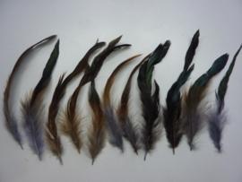 AM.92- 15 stuks hanenveren zilvergrijs met oliekleurige gloed 12-20cm lang