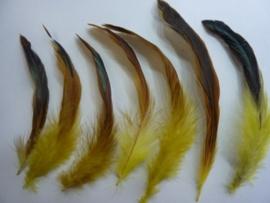 AM.95- 20 stuks hanenveren geel met oliekleurige gloed 12-20cm lang