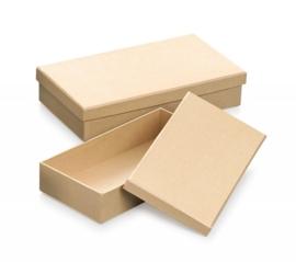 8735 782- 2 stuks ecoshape rechthoekige dozen set 21.3x12.1x4.5cm & 19.3x10.1x4cm