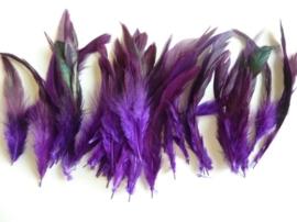 AM.107- 15 stuks hanenveren paars met olie gloed van 12-20cm lang