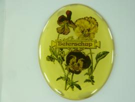 """SLK.193.A - transparante zelfklevende badge """"BETERSCHAP """""""