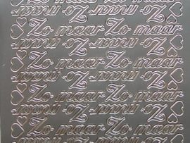 604- zomaar zilver 10x20cm