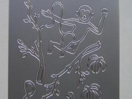 224- apen zilver 10x20cm