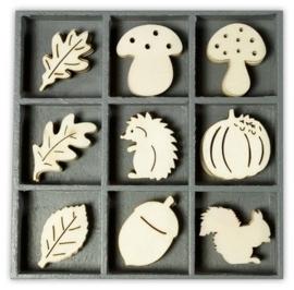 1852 1025- box met 45 stuks houten ornamentjes egel paddestoel blad 10.5x10.5cm