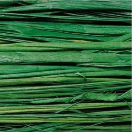 008536/0449- 20gram natuurraffia groen