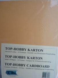 07- 20 vellen kaartkarton A5 formaat voor dubbele kaarten ca.225grams zalm