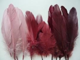 12238/3807- ca. 15 stuks ganzenveren van 12 tot 20cm lang -  oud rose tinten