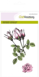 CE130501/1014- clearstamps A6 rozen knoppen botanical