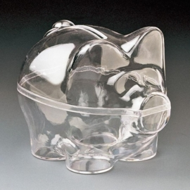 KN6917 895- plastic transparant spaarvarken 9cm