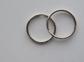 6441 904- 5 stuks sleutelringen van 20mm